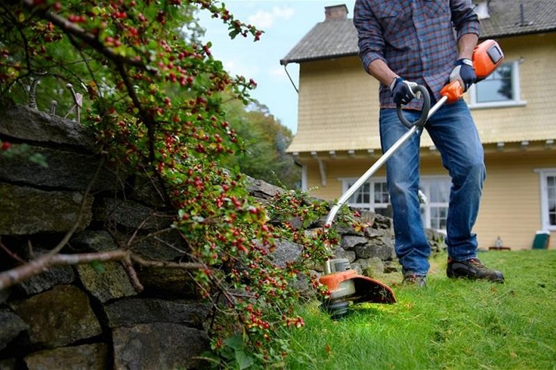 Привести двор в порядок весной своими руками
